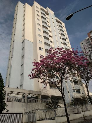 Apartamento aluguel VILA LUCIA São Paulo
