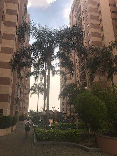 Apartamento aluguel Vila Gomes Cardim - Referência AP00933