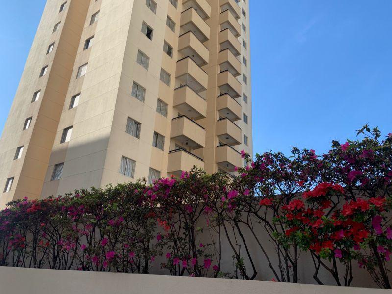 Apartamento aluguel Mooca - Referência ap001066