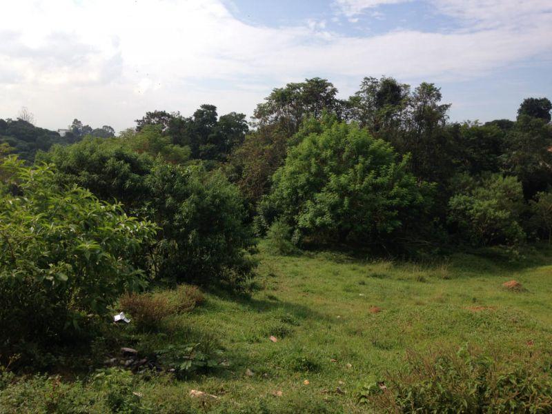 Comercial venda Jardim Anchieta - Referência te00141
